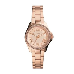 Fossil Cecile Analog Silver Dial Women's Watch – AM4578